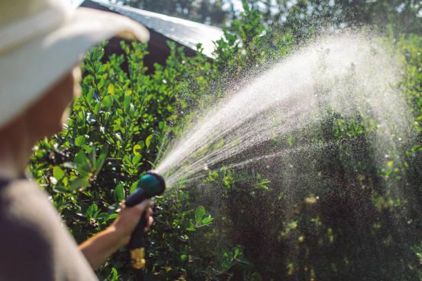 سیستم آبیاری قطره ای